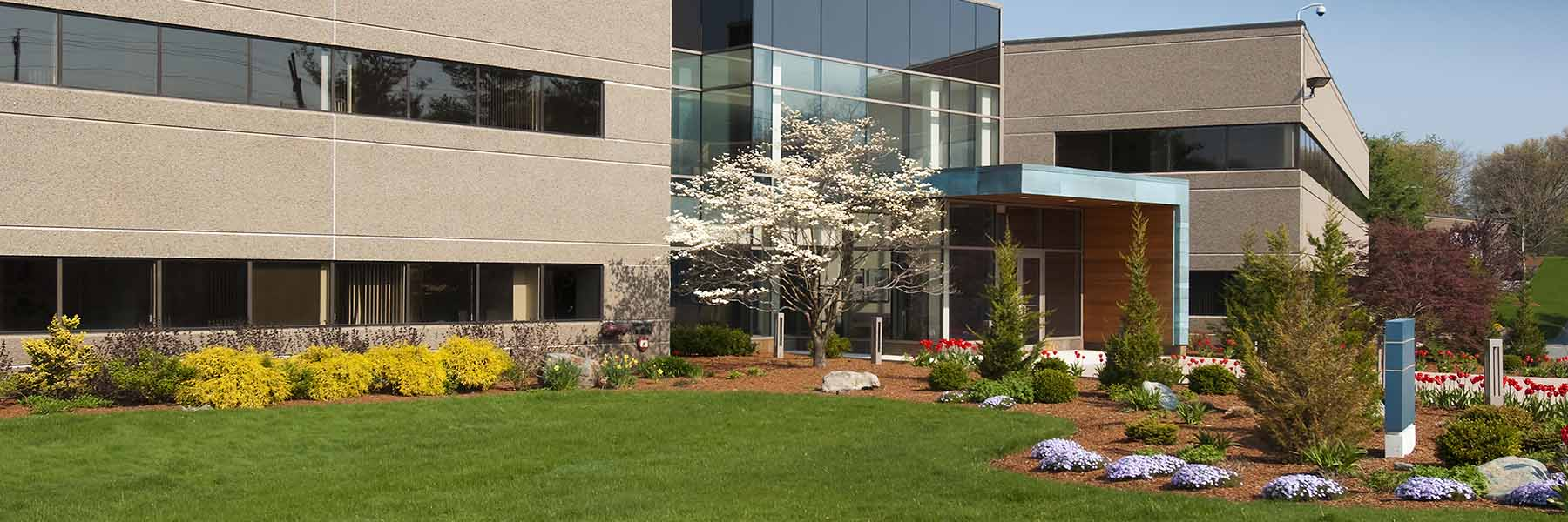 Header_0005_Chantilly-Commercial-Landscaping